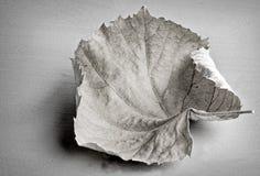 Autumn leaf monochrome Stock Photo