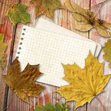 Autumn leaf with note Royalty Free Stock Photography