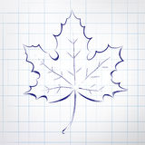 Autumn leaf. Notepad sketch Stock Photography