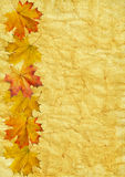Autumn leaf on old paper. Grunge Royalty Free Stock Images