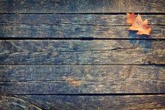 Autumn Leaf is op de Houten Raad Royalty-vrije Stock Afbeelding