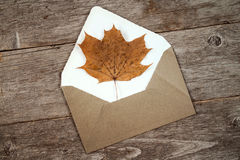 Autumn leaf and open envelope Stock Photography