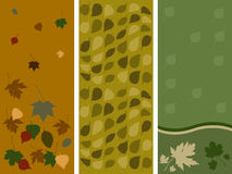 Autumn leaf panels. Three autumn themed panels with colored leaves Vector Illustration
