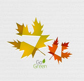 Autumn leaf on paper abstract background Royalty Free Stock Images