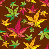 Autumn leaf pattern Stock Photos