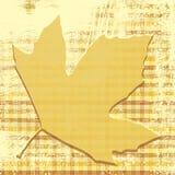 Autumn Leaf Print Stock Photo