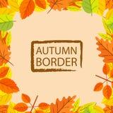 Autumn Leaf Round Border Illustration Stock