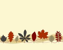 Autumn leaf seamless pattern. Hand drown autumn leaf border seamless pattern on the light background Royalty Free Stock Photo