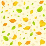 Autumn leaf. Seamless pattern. Stock Image