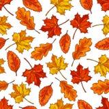 Autumn leaf seamless pattern background Stock Photos