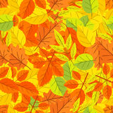 Autumn Leaf Seamless Pattern Royalty Free Stock Photo