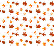 Autumn leaf seamless pattern. Autumn texture background Stock Photo