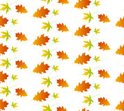 Autumn leaf seamless pattern. Royalty Free Stock Photography