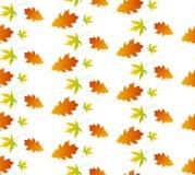 Autumn leaf seamless pattern. Autumn texture background Royalty Free Stock Photography