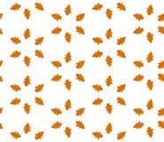 Autumn leaf seamless pattern. Autumn texture background Stock Photography