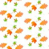 Autumn leaf seamless pattern. Royalty Free Stock Photos