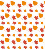 Autumn leaf seamless pattern. Autumn texture background Royalty Free Stock Images