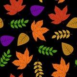 Autumn Leaf Seamless, vetor 100% para o projeto do fundo ilustração do vetor