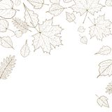 Autumn leaf skeletons template. Royalty Free Stock Photography