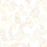 Autumn leaf skeletons template. EPS10 Stock Image