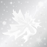 Autumn  leaf and snowflake on silver background Stock Photos