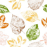 Autumn leaf stamps seamless pattern. Seamless pattern of autumn leaf stamps on white background Stock Photo