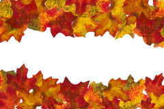 Autumn Leaf Stripe 1 fond Images libres de droits