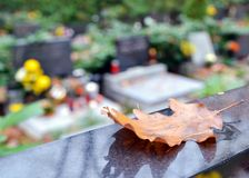 Autumn leaf and tombs with flowers at cemetery Stock Images