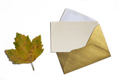 Autumn leaf on white background with card invitation and golden Stock Image