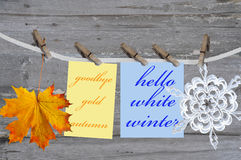 Autumn leaf and winter snowflake Stock Photography