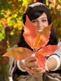 Autumn leaf in woman hands Stock Photo