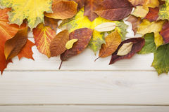Autumn leaf on wood Royalty Free Stock Photo
