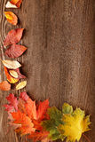 Autumn leaf on wood background Stock Photo