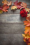 Autumn leaf on wood background top view Stock Image