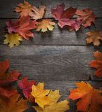 Autumn leaf on wood background top view. Autumn leaf on wood black background top view royalty free stock image