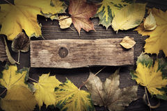 Autumn leaf on wood background (top view) Royalty Free Stock Images