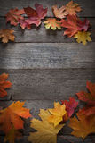 Autumn leaf on wood background (top view) Stock Photo