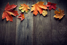 Autumn leaf on wood background (top view) Royalty Free Stock Image