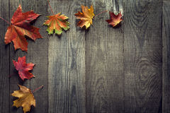 Autumn leaf on wood background (top view) Stock Photography