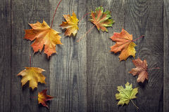 Autumn leaf on wood background (top view) Royalty Free Stock Photography