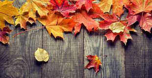 Autumn leaf on wood background top view Royalty Free Stock Photography
