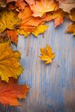 Autumn leaf on blue wood background top view Royalty Free Stock Images
