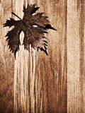 Autumn leaf wooden border. Autumn leaf  border over natural wood background, old dry leaf shape, nature at fall Stock Photography