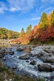 Autumn Leaf y río coloridos con el cielo azul Foto de archivo