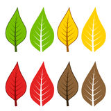 Autumn leafs. Illustration for the web Royalty Free Stock Photo