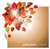 Autumn leafs abstract background Royalty Free Stock Photography