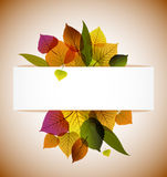 Autumn leafs abstract background Royalty Free Stock Photo
