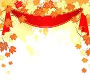 Autumn leafs back Stock Photo