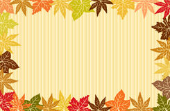 Autumn Leafs Background Royalty Free Stock Image