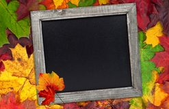 Autumn leafs with chalkboard stock photos